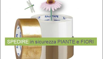 Come spedire in sicurezza le tue piante e i tuoi fiori